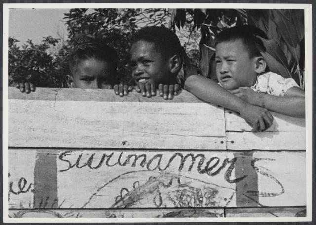 Afbeelding Wij Surinamers